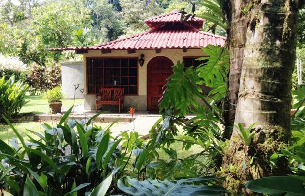 фотографии отеля Casa Corcovado Jungle Lodge изображение №47