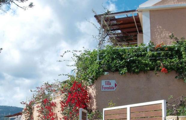 фотографии Villa Forestata изображение №56