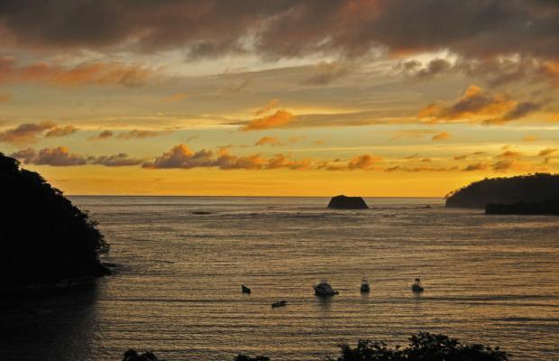 фото Guanamar изображение №18