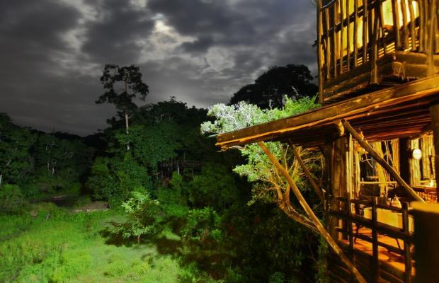 фото Shimba Rainforest Lodge изображение №18