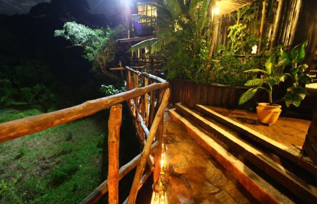 фотографии Shimba Rainforest Lodge изображение №16