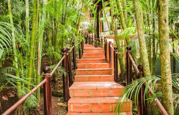 фотографии отеля Villas Lirio (ex. Best Western Hotel Villas Lirio) изображение №43
