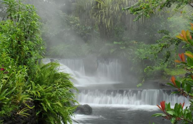 фотографии отеля Tabacón Thermal Resort & Spa изображение №23