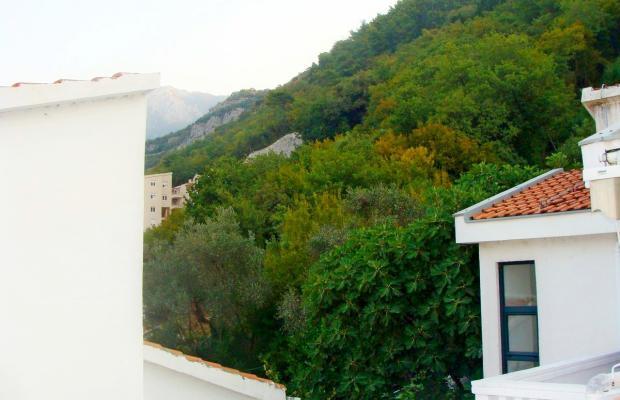 фотографии Villa Lutovac изображение №20