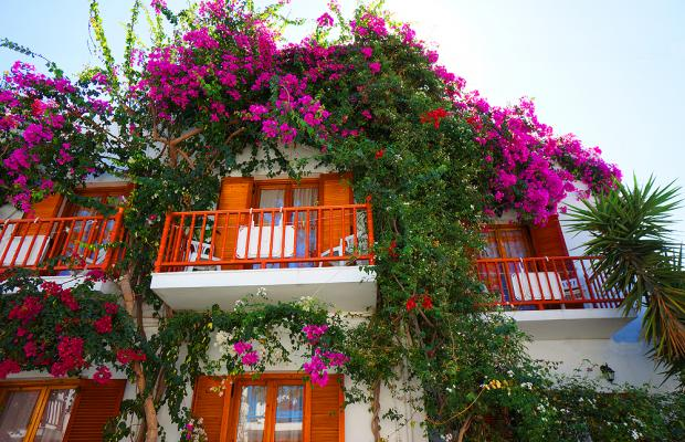 фотографии Arian Hotel изображение №36