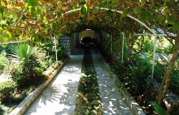 фотографии Villa Roza изображение №12