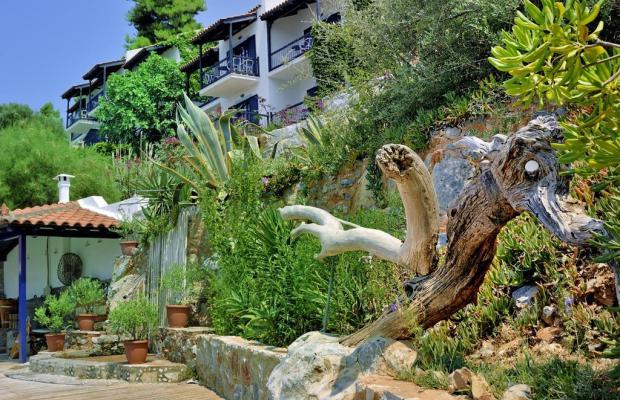 фотографии отеля Adrina Beach Hotel изображение №23