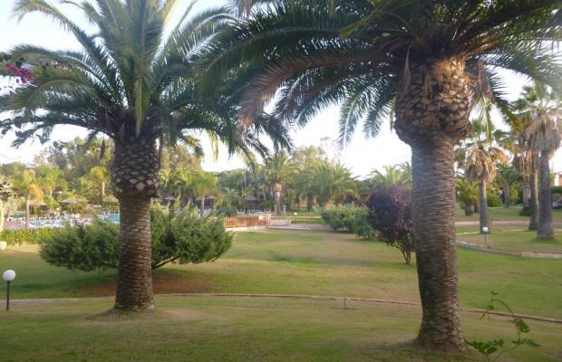 фото отеля Residence Baia delle Palme изображение №13