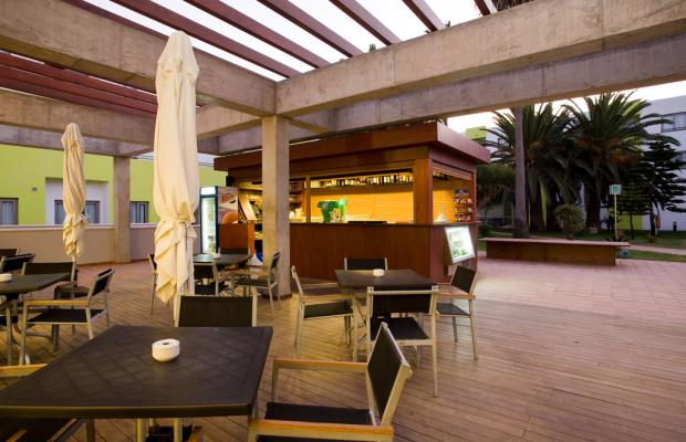 фотографии THe Corralejo Beach изображение №4