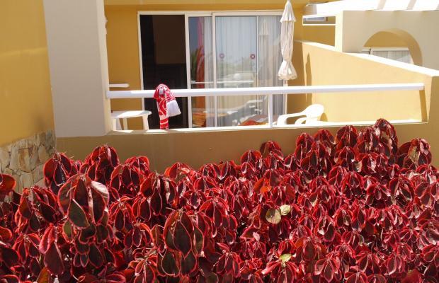 фото отеля Punta Marina изображение №5