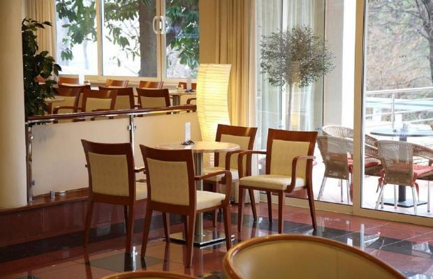 фотографии отеля Ivka изображение №15