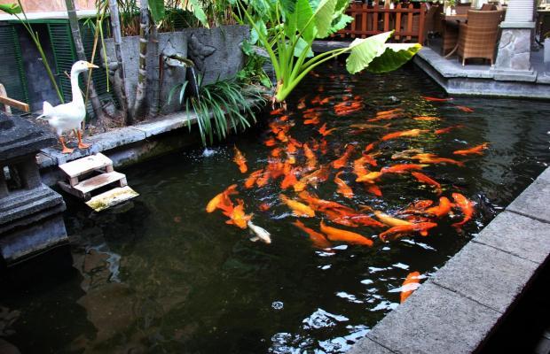 фото отеля Singgasana Hotel Surabaya изображение №13