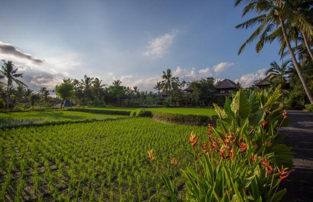 фотографии отеля Agung Raka Resort and Villa изображение №15