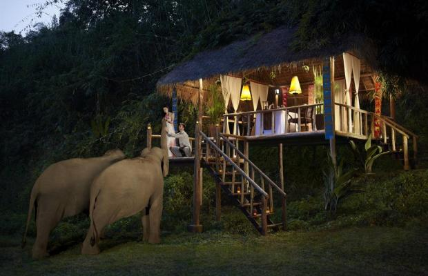 фотографии Anantara Golden Triangle Elephant Camp & Resort изображение №12