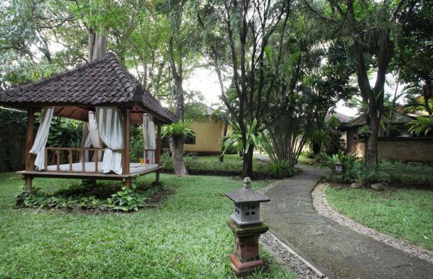 фотографии Villa Lalu изображение №24
