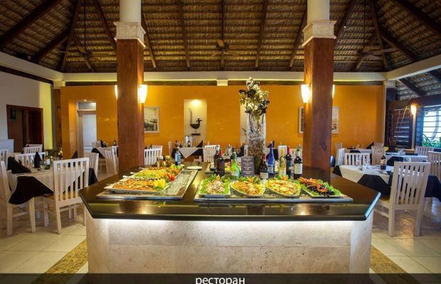 фотографии отеля Vista Sol Punta Cana Beach Resort & Spa (ex. Carabela Bavaro Beach Resort) изображение №7
