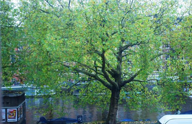 фото отеля NL Hotel District Leidseplein изображение №5