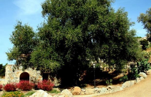 фото отеля La Residence L'Olivella изображение №13