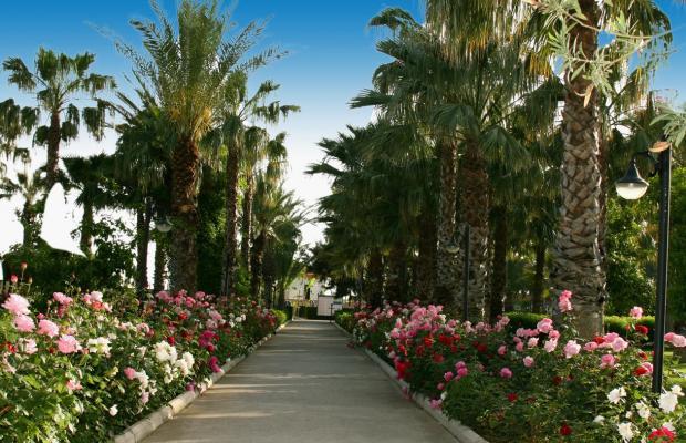 фотографии Adora Golf Resort изображение №16