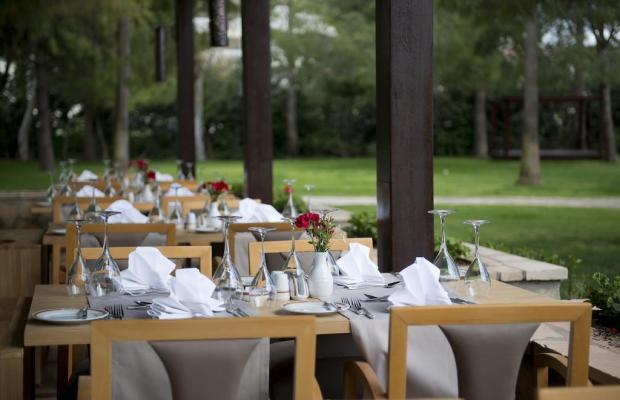 фотографии отеля Barut Hemera Resort & SPA изображение №15
