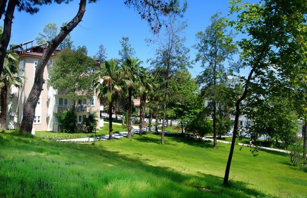 фотографии отеля Club Hotel Sidelya изображение №39
