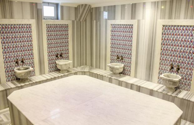фотографии отеля Ark Suite Hotel изображение №3