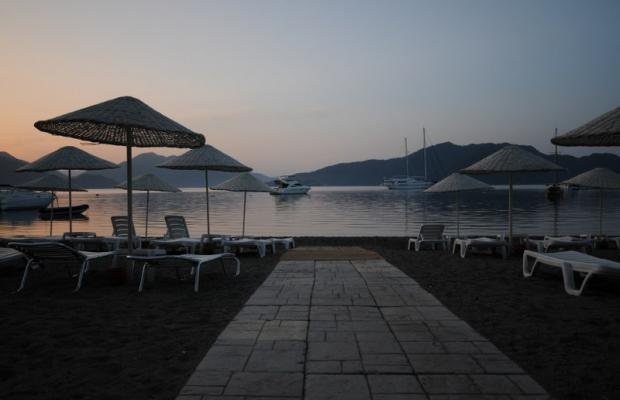 фотографии Tropikal Beach (ex. Tropical Hotel)  изображение №8