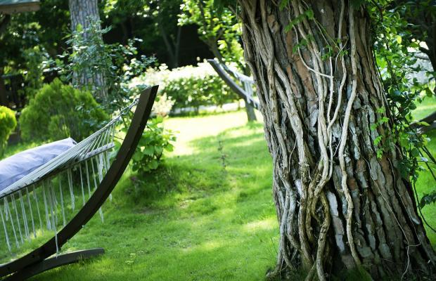 фото отеля Sentido Flora Garden изображение №65