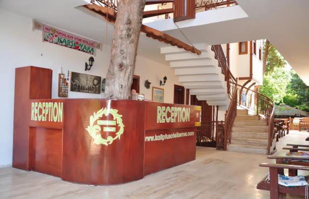 фотографии Kaliptus Hotel  изображение №24