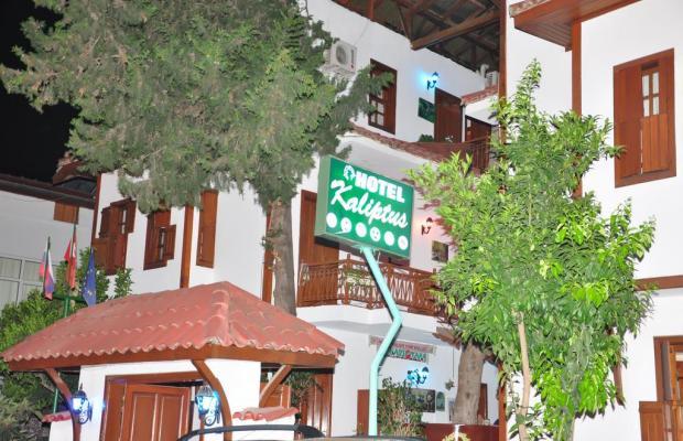 фотографии Kaliptus Hotel  изображение №12