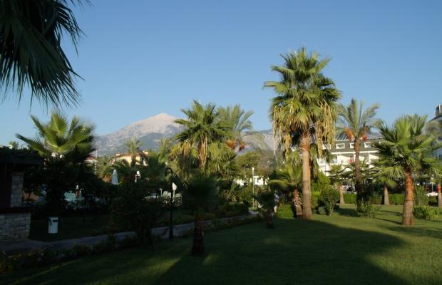фотографии Zena Resort (ex. Riva Zena) изображение №12