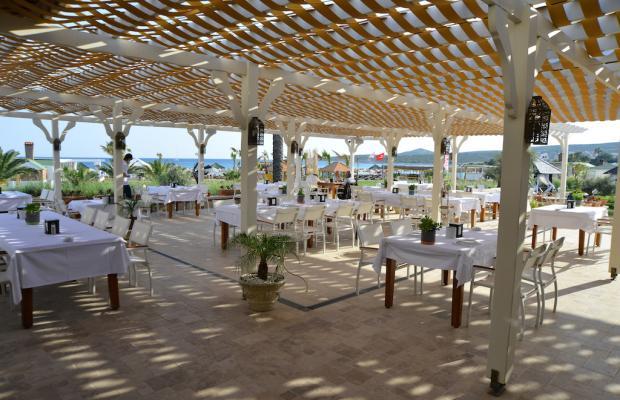 фото отеля Alacati Beach Resort & Spa изображение №17