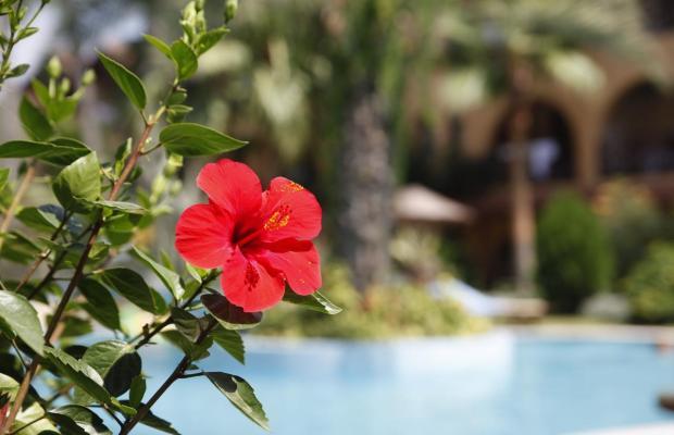 фото отеля Club Tropical Beach изображение №25