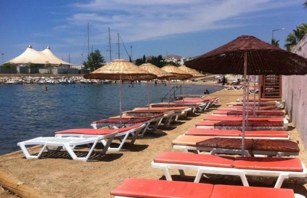 фотографии Fiorita Beach Hotel (ex. Alta Beach) изображение №16