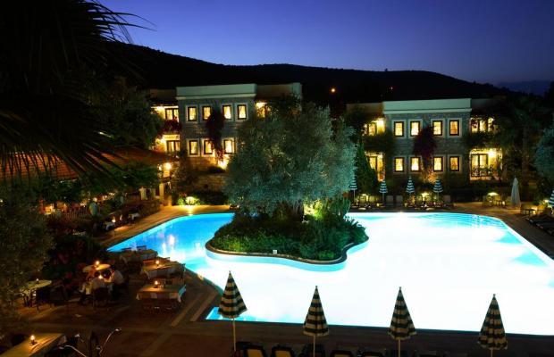 фото отеля Zeytinada изображение №25