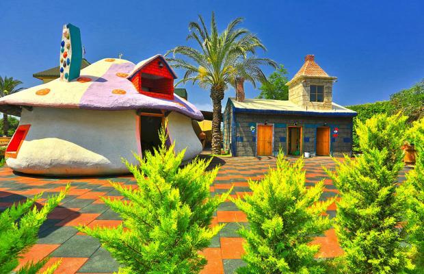 фотографии отеля Lyra Resort (ex. Papillon Lyra) изображение №11