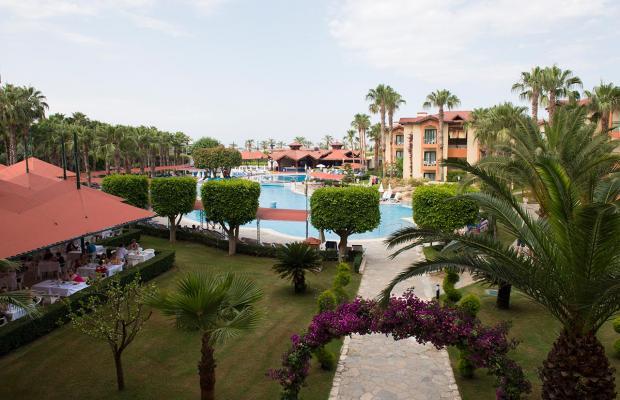 фото отеля Miramare Queen изображение №29