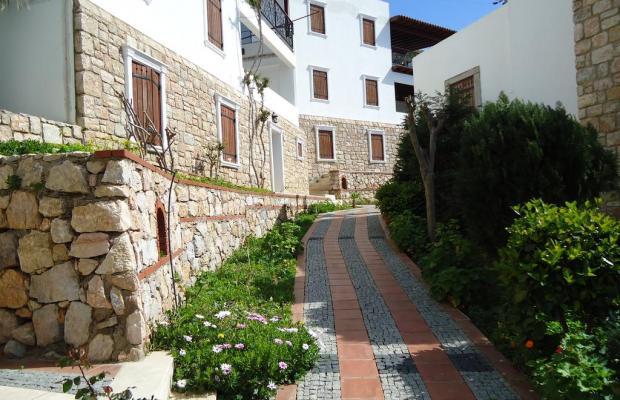 фотографии Arion Resort Hotel изображение №16