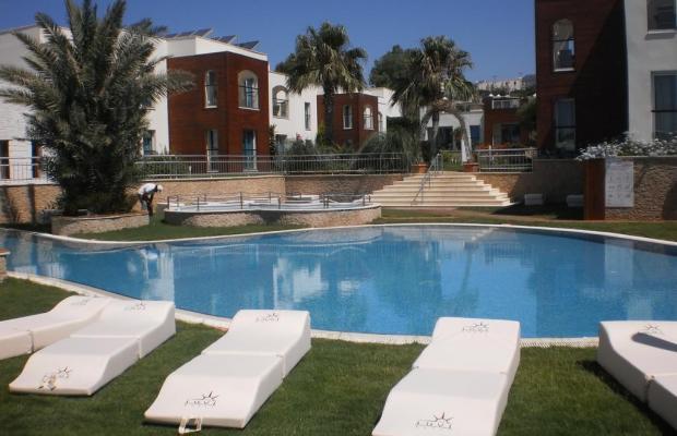 фотографии отеля Costa Luvi Hotel (ex. The Luvi Hotel; Club Oleal) изображение №15