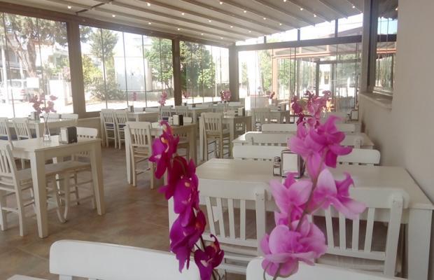 фотографии отеля Mood Beach Hotel (ex. Duman) изображение №39