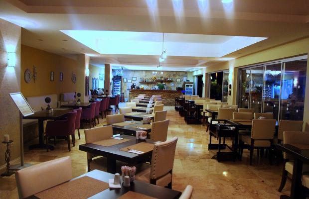 фотографии Sina Hotel Torba изображение №8
