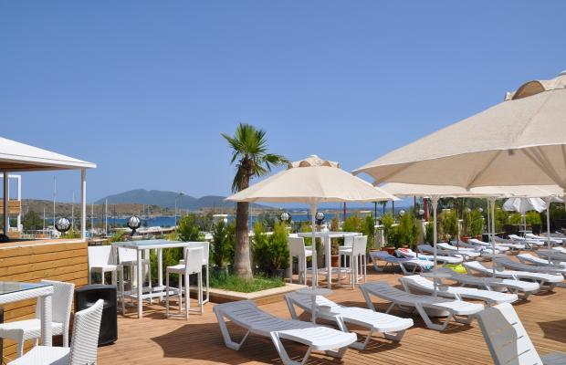 фото отеля Blue Green Hotel (ex. Poseidon Suites; Club Anka) изображение №49