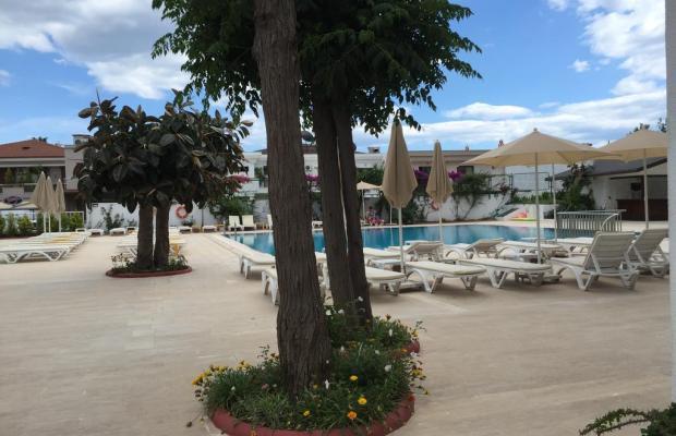 фотографии отеля Sonnen Hotel (ex. Sun Maris Beach; Delfina) изображение №15