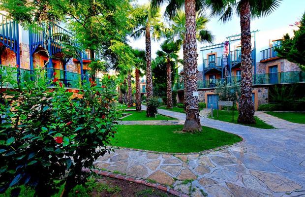 фотографии отеля Jasmin Beach Hotel изображение №67