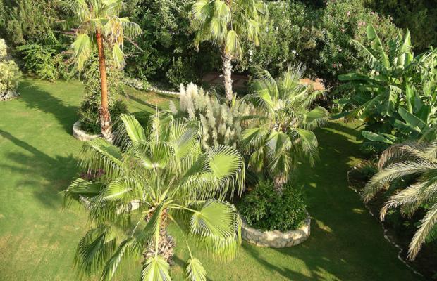 фотографии отеля Oleander изображение №15