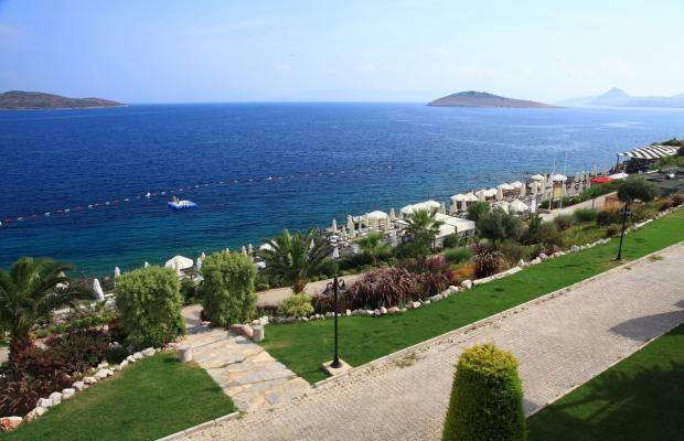 фото отеля Aktur Residence изображение №105