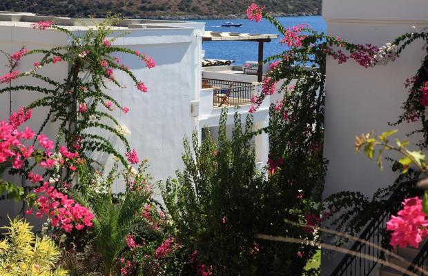 фотографии отеля Aktur Residence изображение №59