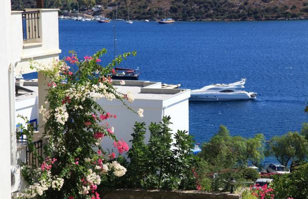 фотографии отеля Aktur Residence изображение №55