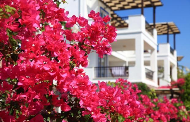 фото Aktur Residence изображение №54