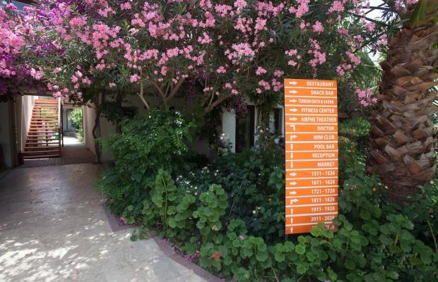 фото отеля Club Mira Luna (Club Admira) изображение №13